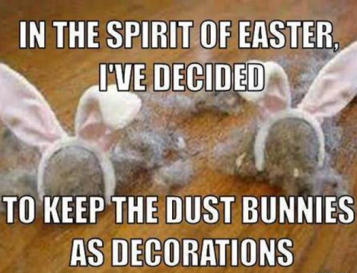 Dust Bunnies or Easter Bunnies?